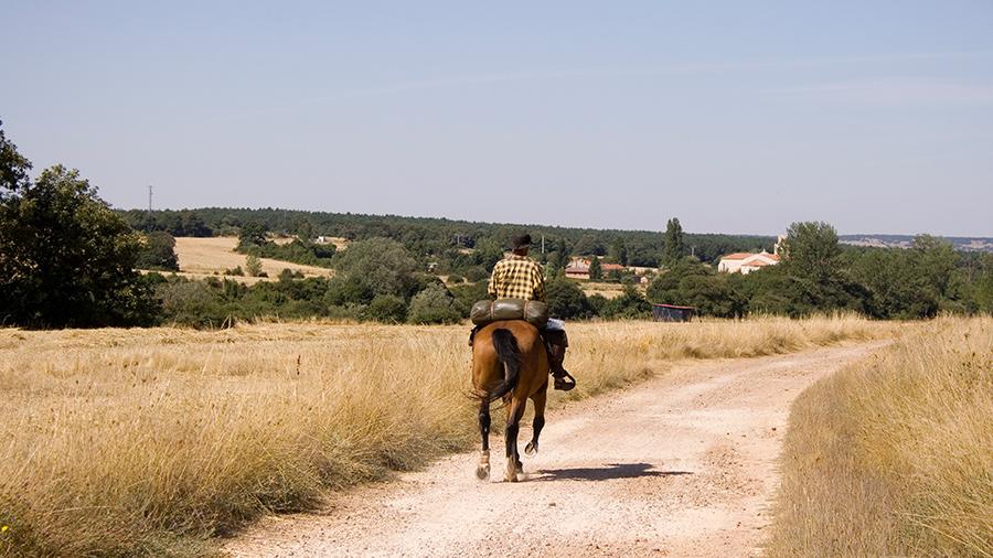 Camino de Santiago a caballo